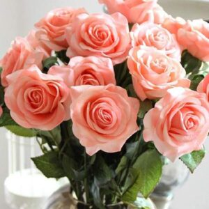 60 24 rosas