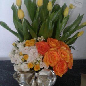 tulipanes (1)